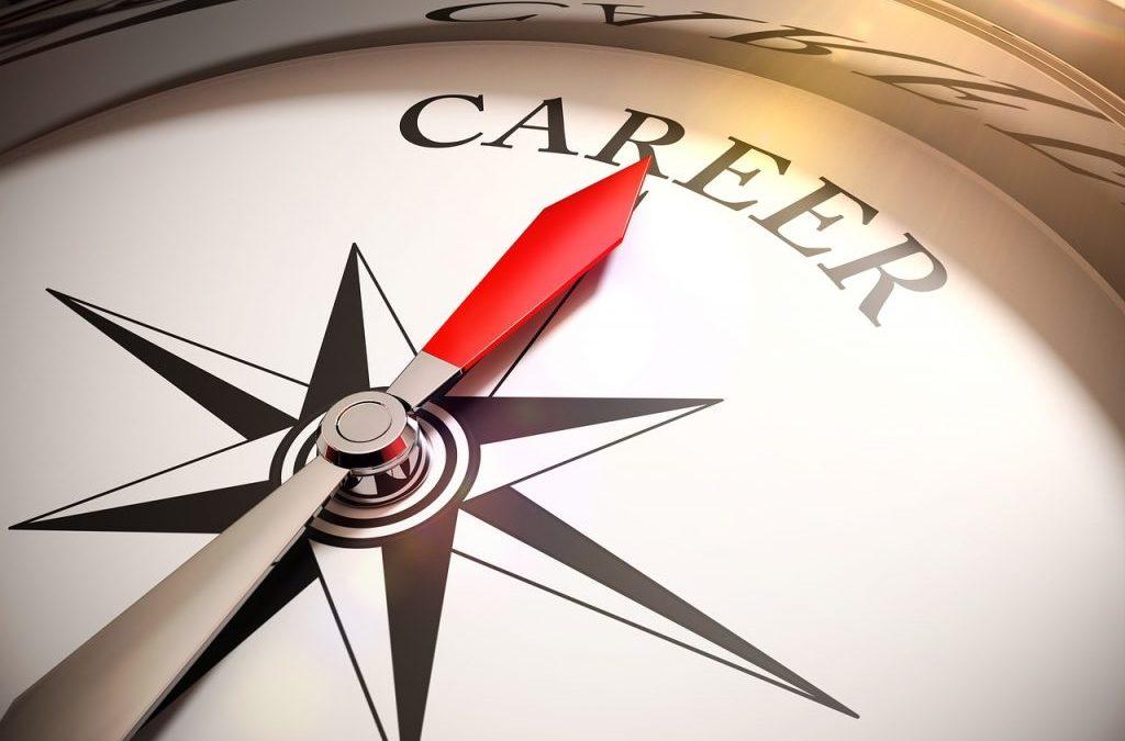 Wat houdt ons loopbaantraject in?